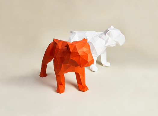 RJ Paper | Paper sculpture origami – Colorplan
