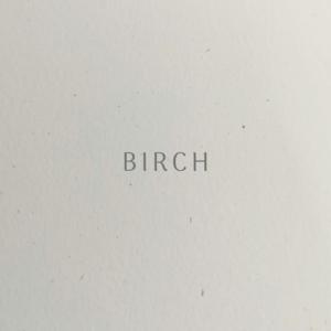 RJ Paper | Mohawk Vellum Birch